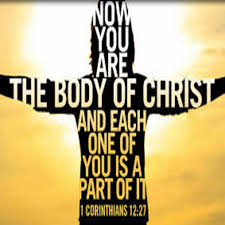 Body parts of christ